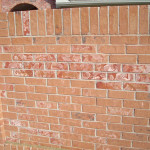 Litigation Support for Masonry Bricks